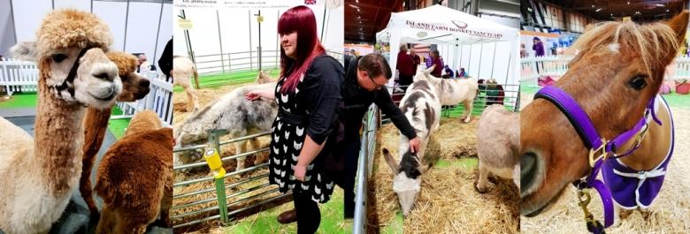 Farm Animals (18)
