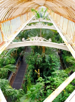 Kew Gardens (16)