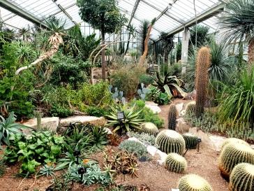 Kew Gardens (28)