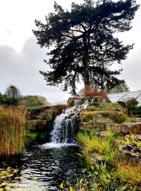 Kew Gardens (56)