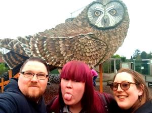 Scottish Owl Centre (2)