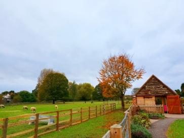 Sheldon Country Farm (9)