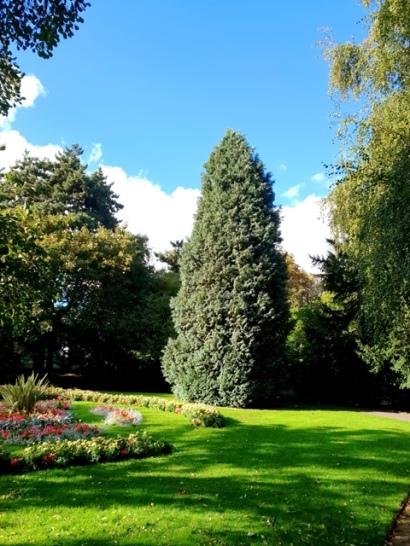 The Nottingham Arboretum (3)