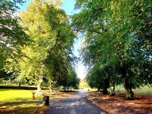 The Nottingham Arboretum (4)