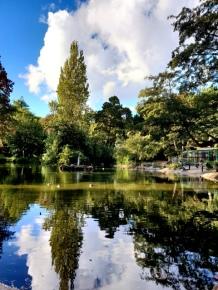 The Nottingham Arboretum (8)