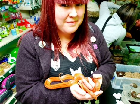 Wildside Animal Encounters at Fur and Fangs (38)