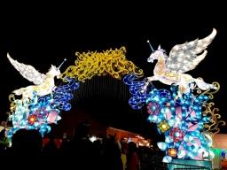 Magical Lanterns (1)