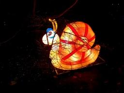 Magical Lanterns (19)