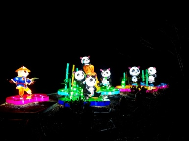 Magical Lanterns (27)