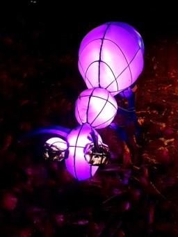 Magical Lanterns (3)