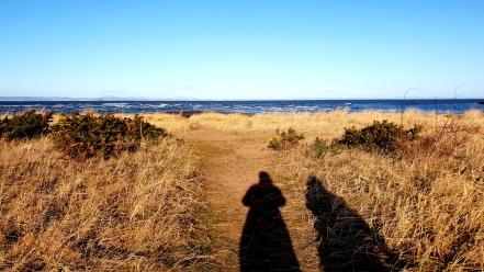 Musselburgh Beach (2)