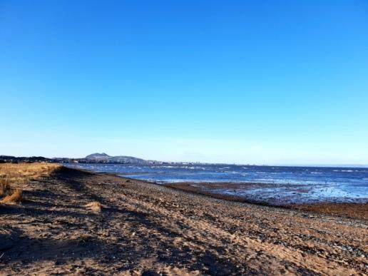 Musselburgh Beach (3)