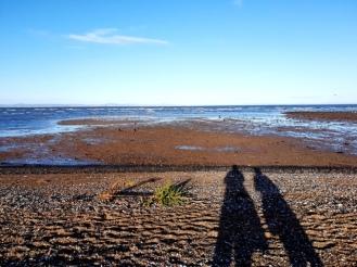 Musselburgh Beach (7)