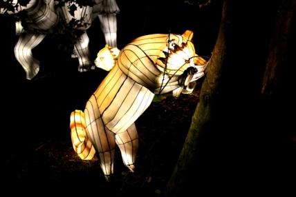 The Giant Lanterns of China Edinburgh Zoo (103)
