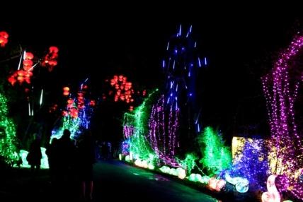 The Giant Lanterns of China Edinburgh Zoo (106)