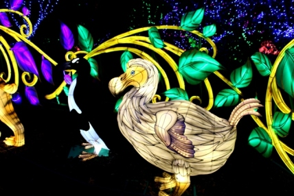 The Giant Lanterns of China Edinburgh Zoo (107)