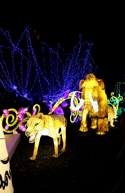 The Giant Lanterns of China Edinburgh Zoo (108)