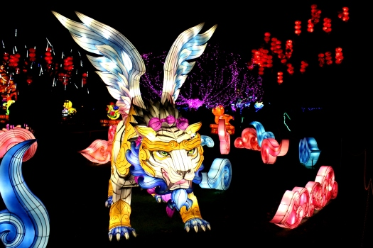 The Giant Lanterns of China Edinburgh Zoo (17)