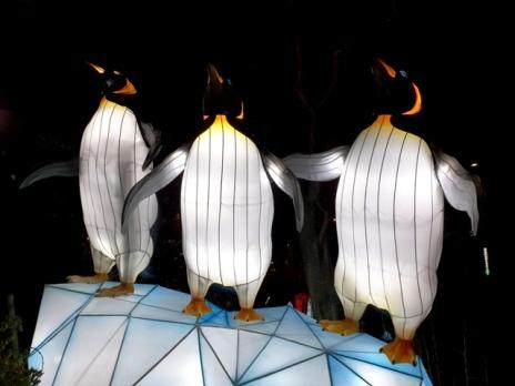 The Giant Lanterns of China Edinburgh Zoo (5)