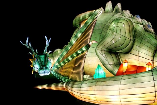 The Giant Lanterns of China Edinburgh Zoo (51)