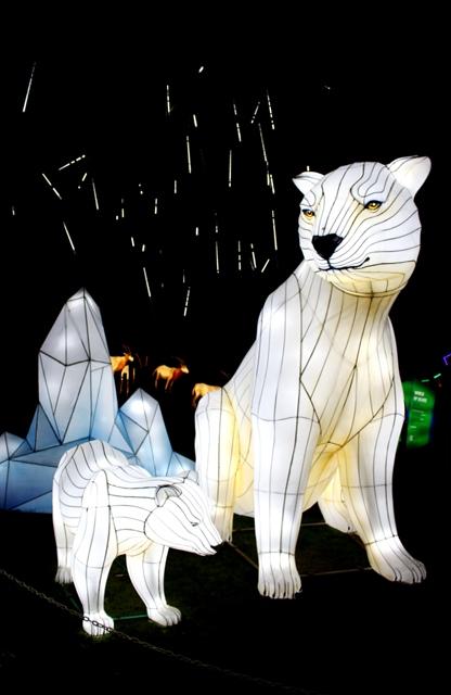 The Giant Lanterns of China Edinburgh Zoo (83)