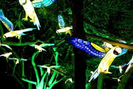 The Giant Lanterns of China Edinburgh Zoo (96)