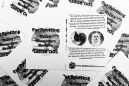 Cat-Spotting Issue 1 (2)
