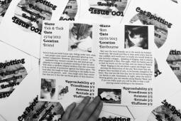 Cat-Spotting Issue 1 (3)