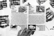 Cat-Spotting Issue 2 (3)