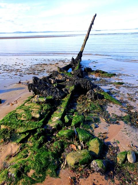 Longniddry Beach 080919 (12)