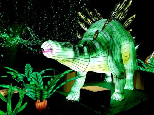 Edinburgh Zoo Lanterns 301119 (39)