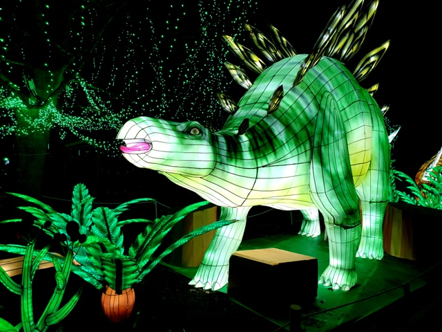 Edinburgh Zoo Lanterns 301119 (39)