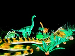 Edinburgh Zoo Lanterns 301119 (51)