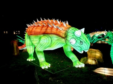 Edinburgh Zoo Lanterns 301119 (63)