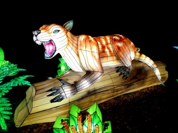 Edinburgh Zoo Lanterns 301119 (86)
